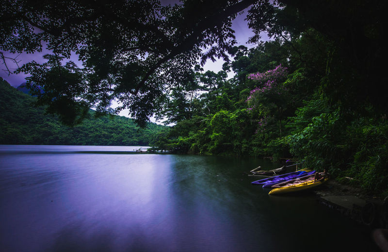 Tranquility. The Great Outdoors - 2017 EyeEm Awards Water Tree Lake Nature Nautical Vessel No People Scenics Beauty In Nature Outdoors Day in Bulusan Lake Sorsogon Philippines