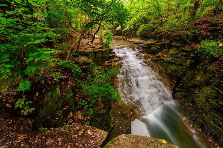Waterfall Forest Scenics Nature Beauty In Nature Tranquil Scene Tranquility Motion Idyllic Outdoors No People Water Rock - Object Travel Destinations Long Exposure Tree Vacations Day Landscape Freshness