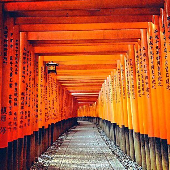 日本 伏見稻荷神社 是我一輩子也無法忘懷的地方