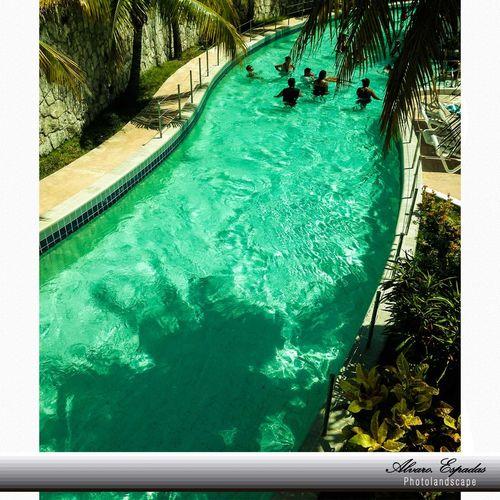 """""""Aprende a vivir y sabrás morir bien."""" Confucio Quintana Roo Cancun☀ Parque Acuático Wet&wild"""