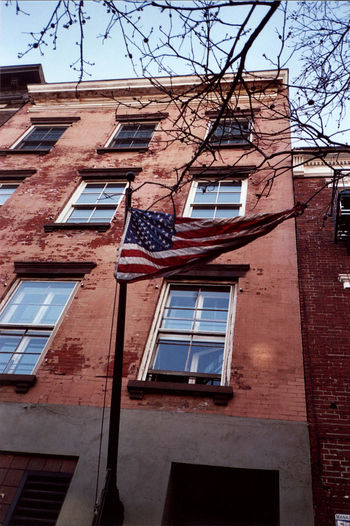 Manhattan New York Tree A Brownstone Brownstone Building Building Exterior Built Structure Flag Greenwich Village Looking Up Low Angle View Low Rise Outdoors Vertical Windows