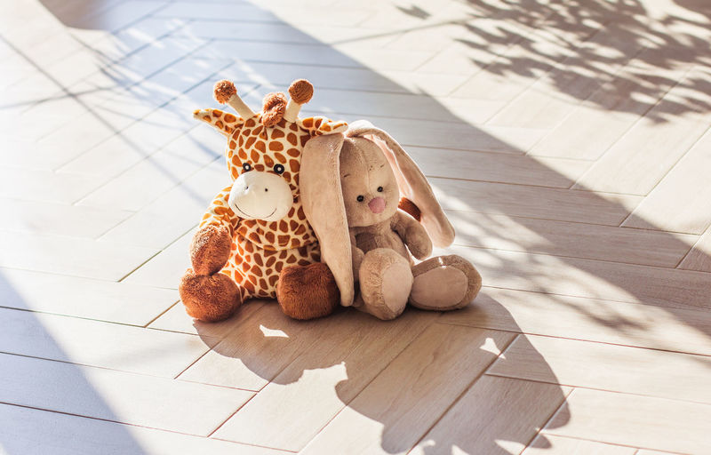 High angle view of stuffed toy on floor