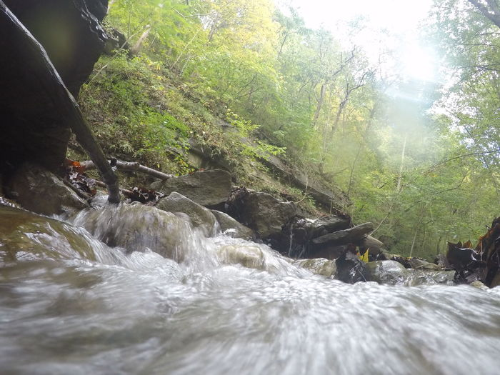 Saw today in creek at gorge.. Water Motion Non-urban Scene Stream Beauty In Nature Flowing Water Sunlight Waterfront Onlygodcouldcreatethis Nature Photography No Filter, No Edit, Just Photography Sawonmyadventure Go Pro Pixing Go Pro Hero 4 Go Pro Is Life Water Surface Small Waterfall