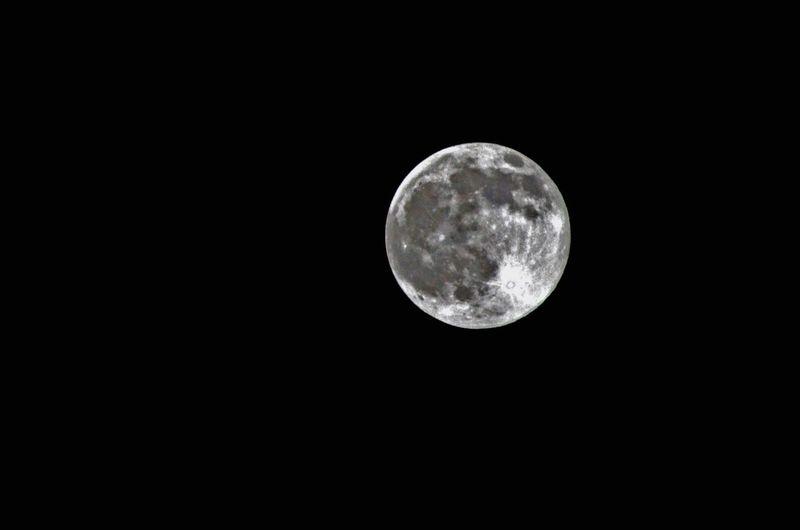 Moon Blue Moon