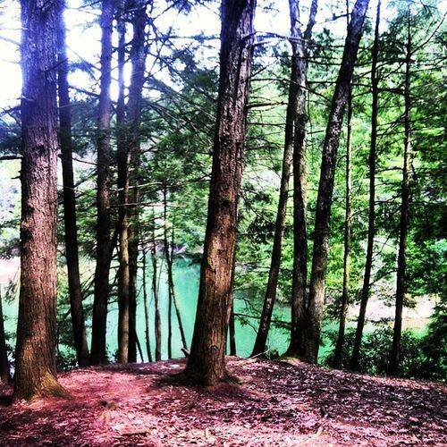 Thecliffs Poconos Poconomountain Love homeawayfromhome peaceful prettywater iphone igdaily iphone4