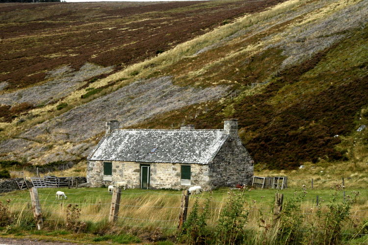Bothy Building Exterior Built Structure House Landscape Lecht Mountain Nature Non-urban Scene Outdoors Percy Toplis Residential Structure Rural Scene Scotland Shepherds Hut Toplis Hut Topliss Hut Tranquil Scene