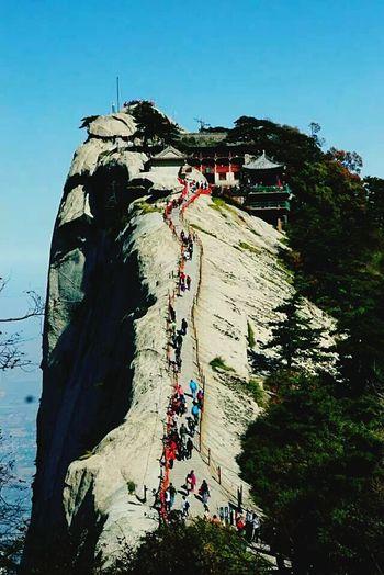 Tree Huashan Mountain Mountain Mountains Shaanxi Shaanxi Province Sky Skyline