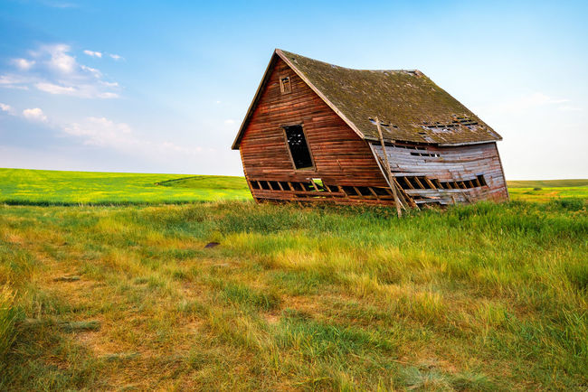 Abandoned Homestead - Leaning Barn Abandoned Architecture Building Exterior Built Structure Cloud - Sky Day Deterioration Environment Field Grass Green Color Land Landscape Nature No People Non-urban Scene Outdoors Plant Ruined Rural Scene Scenics - Nature Sky Wood - Material