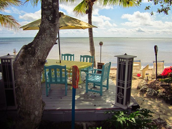 Beach Outdoors Travel Destinations Tranquility Vacations Palm TreeFlorida Keys Big Pine Key Ocean View Tropical Climate Palm Tree