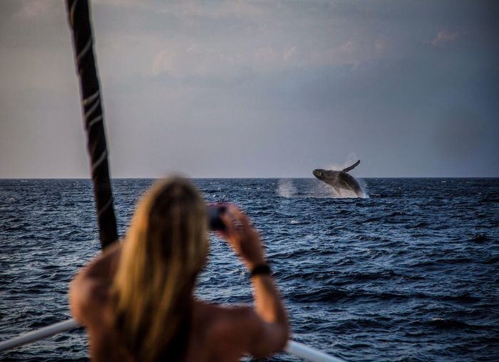 Rear View Of Woman Photographing Whale In Sea Against Sky