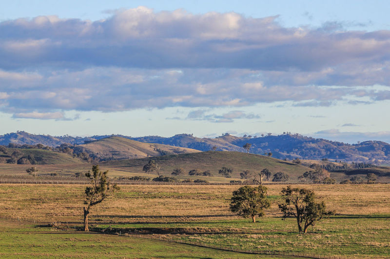 Country Scene Australia EyeEm Best Shots The Great Outdoors - 2017 EyeEm Awards The Week On EyeEm Beauty In Nature Cloud - Sky Clouds And Sky Day Field Grass Landscape Mountain Nature No People Outdoors Rural Scene Scenics Sky Tranquil Scene Tranquility Tree
