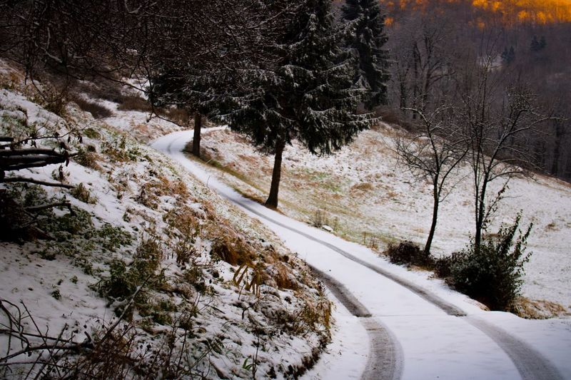 Winter Winter Snow Cold Temperature Tree Nature Road The Way Forward Beauty In Nature Tranquility No People Outdoors Scenics Day Landscape High Snow Paradise Skyscape Nature Beauty Lifestyles