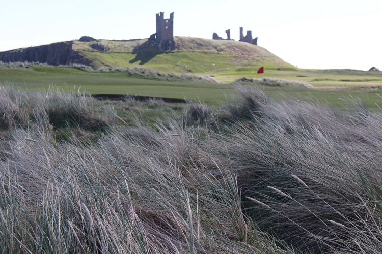 Rear view Grass Nature Landscape No People Day Field Outdoors Tranquility Scenics Beauty In Nature Sky Dunstanburgh Castle Hiking Coastal Walk Northumberland Geography Rural Scene
