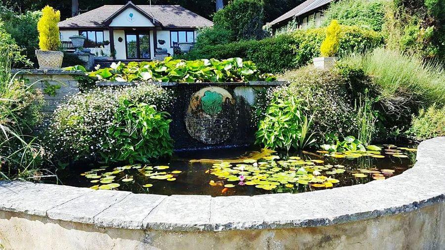 Saint Margarets Bay Fountain Pines Garden
