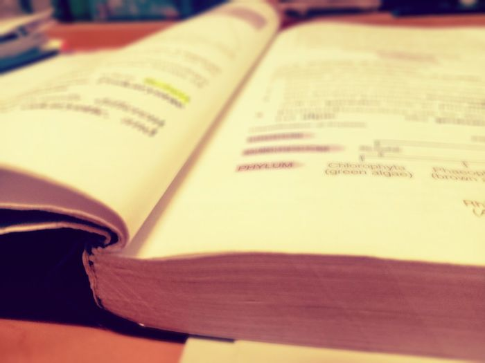 Study Day Bored With BOOK Sad Day-Exam