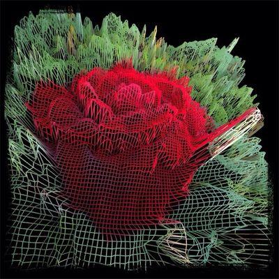 Glitch rose
