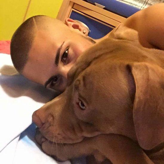 Ma quanto siete belli ❤ Love Amorimiei Dog