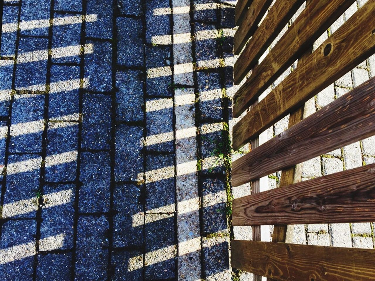 full frame, pattern, backgrounds, day, no people, close-up, outdoors, nature