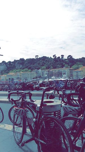 Bicycle Transportation Outdoors No People France Nice Trees Port Landscape Chilling Nice Terrace