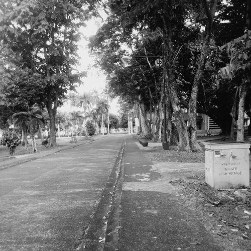 The road less taken