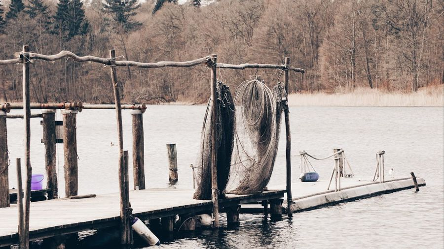 Wooden posts in lake against trees