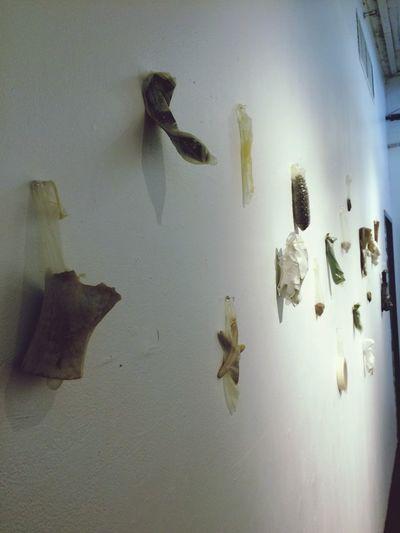 Artschool BeLike Art Condoms