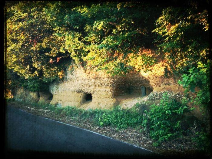 Old Battlefield Scenery Shots