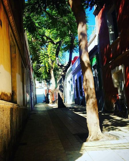 Calles poco habituales PaisajesUrbanos ElToscal Santacruz Tenerife Islascanarias IslasAfortunadas
