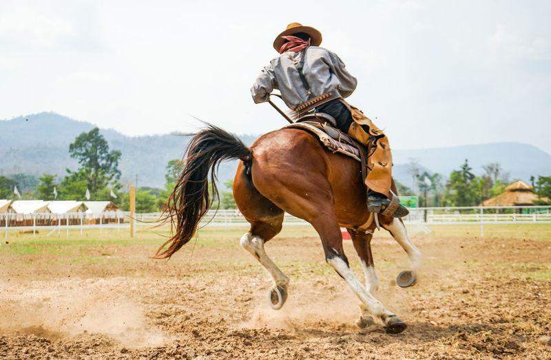 Man riding horse running on field