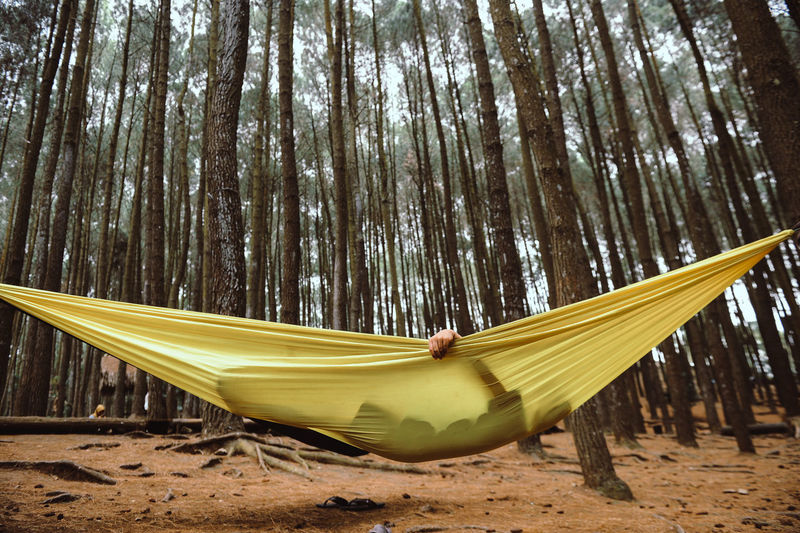 Person relaxing on hammock in forest