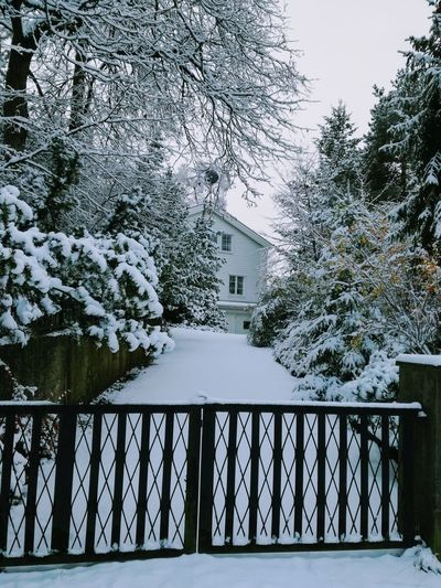 'The White House' Day Tree Outdoors No People Water Sky Nature Close-up Architecture Urban Nature Wintertime Darker Days Cold Beauty In Nature Afternoonlights Home Oslo 2017 Urbexphotography KJ✨