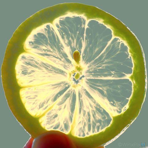 Sommergefühle Sugar Lemon Lemon Lemons Summer Views Summer Light TangyLemon Summer Colors Vibrant Colors Love Summer Lemon Rind Lemon Seed Summer Flavors