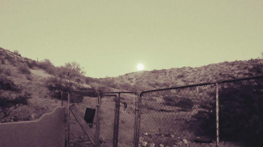 AZ Sunset B&W Arizona Arizona Sky Arizona Sunsets Black And White Tree Railing Barbed Wire Gate Sky Chainlink Fence