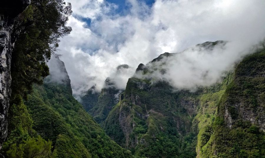 Beautiful Nature Green Hiking Madeira Madeira Island Mystic Portugal Beauty In Nature Caminhada Clouds Clouds And Sky Island Mountains Treking Up In The Mountains