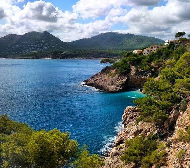 Zum Tag 2 der Challengeonnaturephotography machen wir uns wieder auf, nach Mallorca und werfen einen Blick über die Küste bei Arta - in der Nähe der bekannten Höhlen, die man unbedingt besichtigen sollte, wenn man schon hier ist. Reise Reiseblog Reisebericht Blog Bloggen Travel Mallorca Blog Reiseblog Spanien Travelphotography Artà