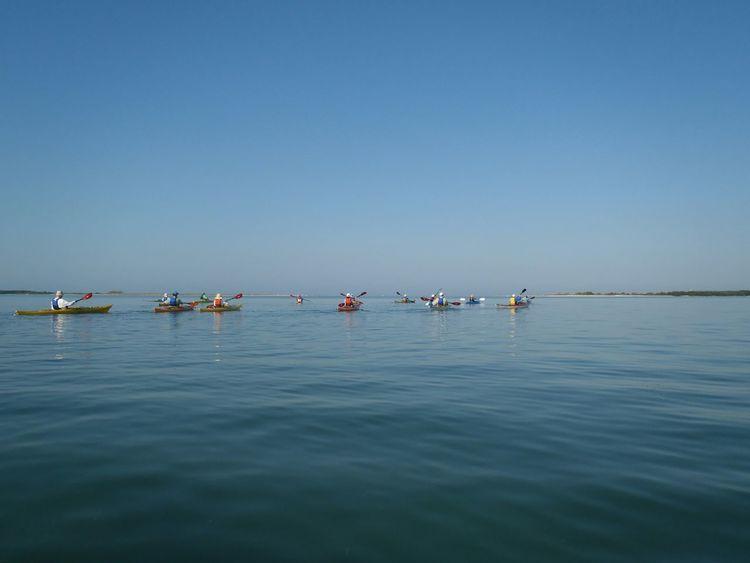 Kayaking Kayaker Watersports Calm Waters Floridaliving  Kayaks Kayakers On The Water