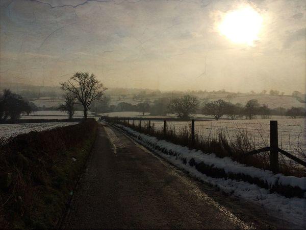 Winter landscape Winter Winter Sun Countryside Walks
