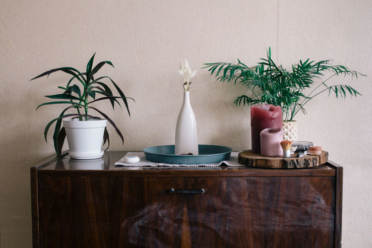 Houseplants with candles on table at home