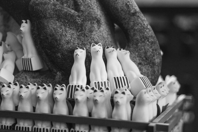 Sometimes BW is betterrrrrr Bw Bw_collection Bw_lover Day Figurines  Foxes Group Of Objects Japan No People Objects Temple Tokyo Tradition