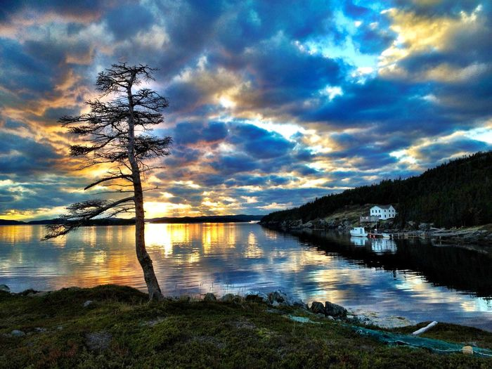 Perfect day Water Reflection Sky Nature Beauty In Nature Cloud - Sky Lake Scenics Tree Tranquil Scene Tranquility Sunset No People Idyllic Outdoors Clam Day Live For The Story Lost In The Landscape