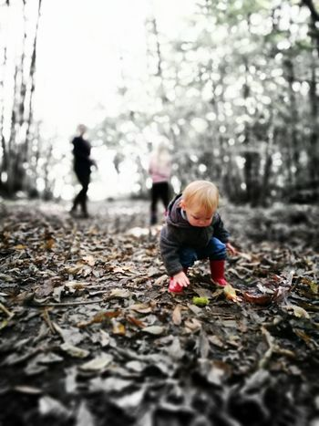 Leisure Activity Focus On Foreground Outdoors Person Selective Focus Beauty In Nature Childhood Nature Day Walking The Dog Woodland Walk Family TakeoverContrast BYOPaper!