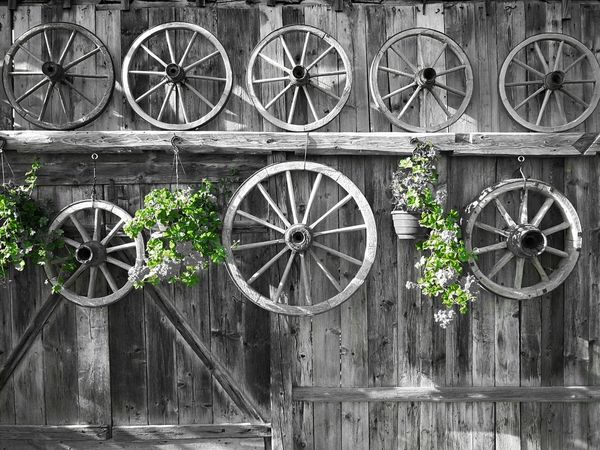 Black And White With A Splash Of Colour Getting Inspired Green Color Architecture EyeEm Best Shots HelloEyeEm EyeEm Gallery Hello EyeEm✌ EyeEm Best Edits Eye4photography  The Week On EyeEm EyEmNewHere The Places I've Been Today Exeptional Photographs Capture The Moment The Week On Eyem EyeEm Selects Wooden Wheels Old-fashioned Old But Awesome Wood - Material Wooden Wooden Structure Old-fashioned Outdoors
