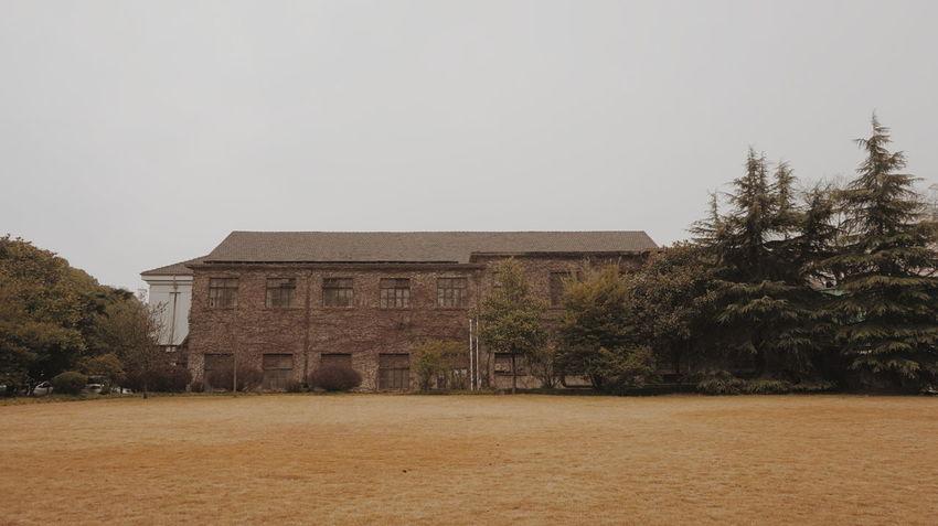 Yellow autumn.Sony α5000 original photo. Fudan university. Rotten trees and grasses. Fudan University