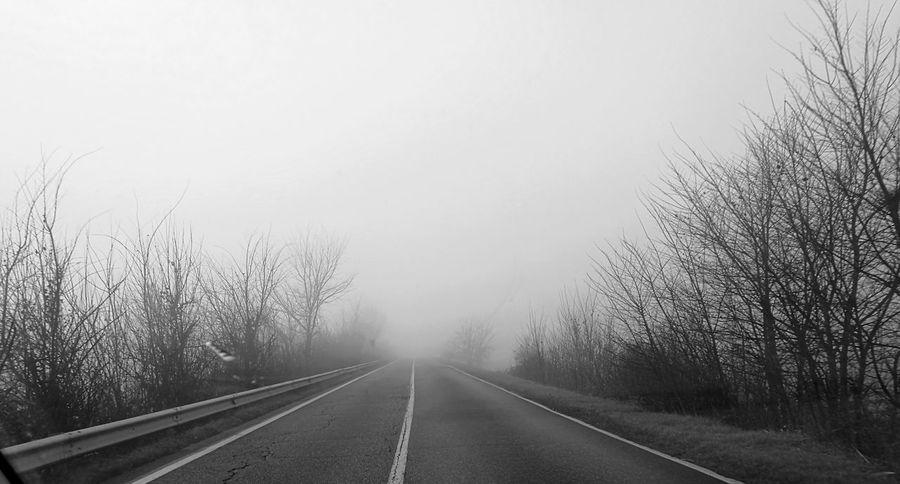 Foggyday Foggy Road GoingToWork Italy Pianurapadana Mantova Dontseeoutside Grey Winter Winteriscoming😂 Nature Trees