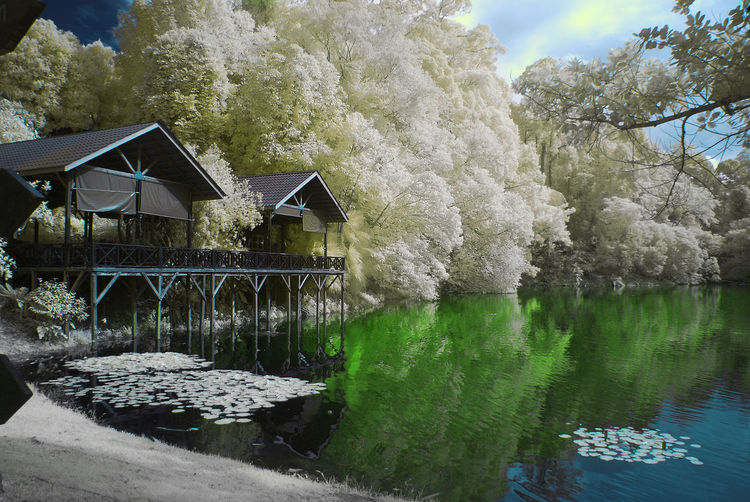 An infrared view of stilt house at a lakeside. Infrared White Foliage Architecture Beauty In Nature Building Exterior Built Structure Color Infrared Day Infrared Photography Lake Landscape Nature No People Outdoors Sky Stilt House Tranquility Scene Tree Water