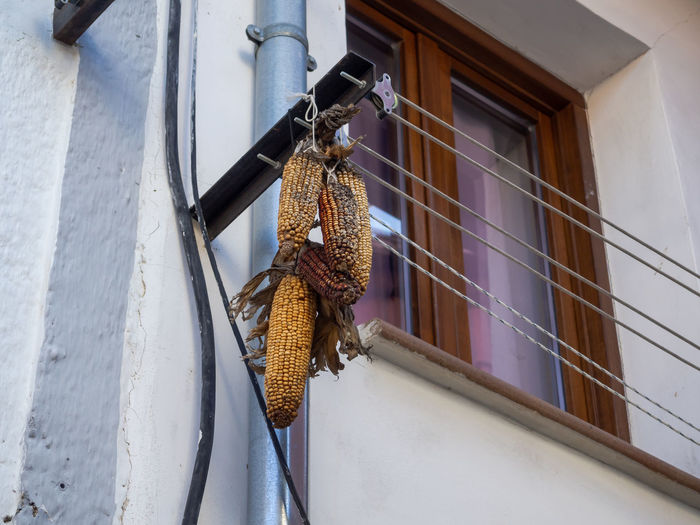 Low angle view of clothes hanging on wall of building