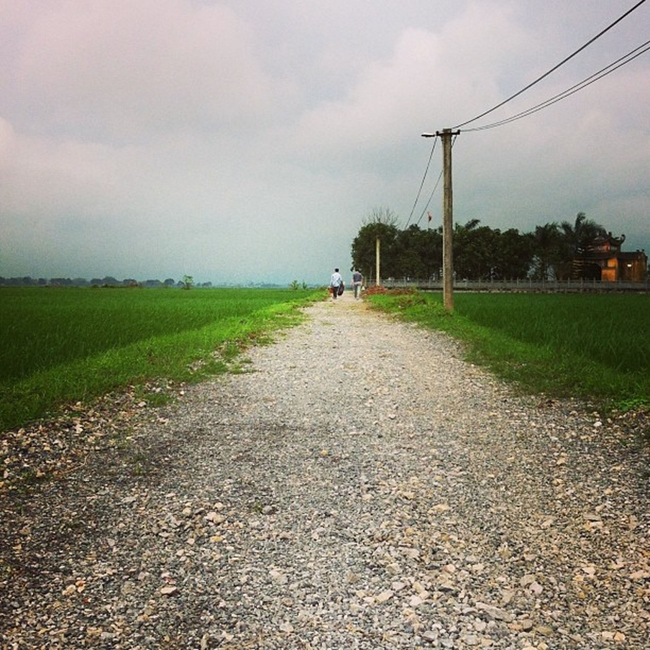 sky, the way forward, field, cloud - sky, grass, landscape, diminishing perspective, dirt road, vanishing point, cloudy, rural scene, agriculture, tranquil scene, tranquility, road, nature, cloud, transportation