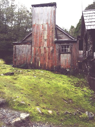 Old Cottage in Cradle Mountain, Tasmania Architecture Built Structure Building Exterior Grass No People House Day Abandoned Outdoors Barn Sky Tree Nature Tasmania Cradle Mountain National Park