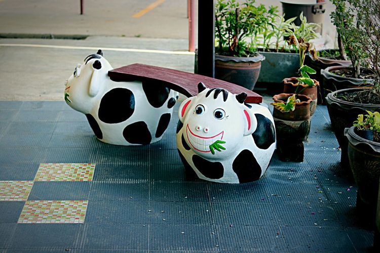 Garden Chair Cow Cow Chair Animal Chair Cute Chairs Sitting Sitting Chair Garden Chair ArtWork Art Chair