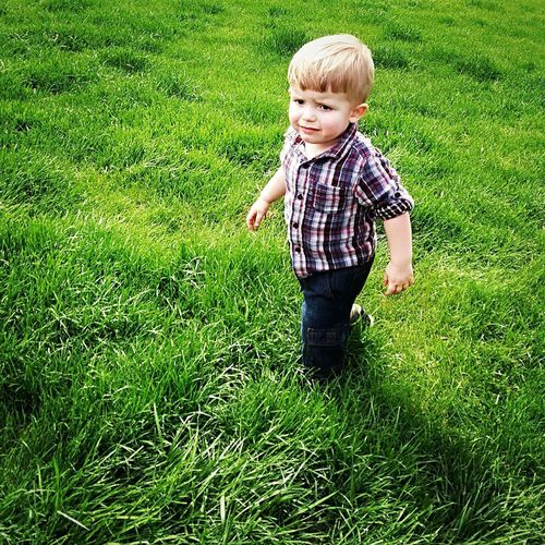 Never wants to come inside Farmer Grass Childhood Baby Full Length One Person Green Color Day Toddler  Cute Standing Casual Clothing Boys Real People Growth Outdoors Nature People
